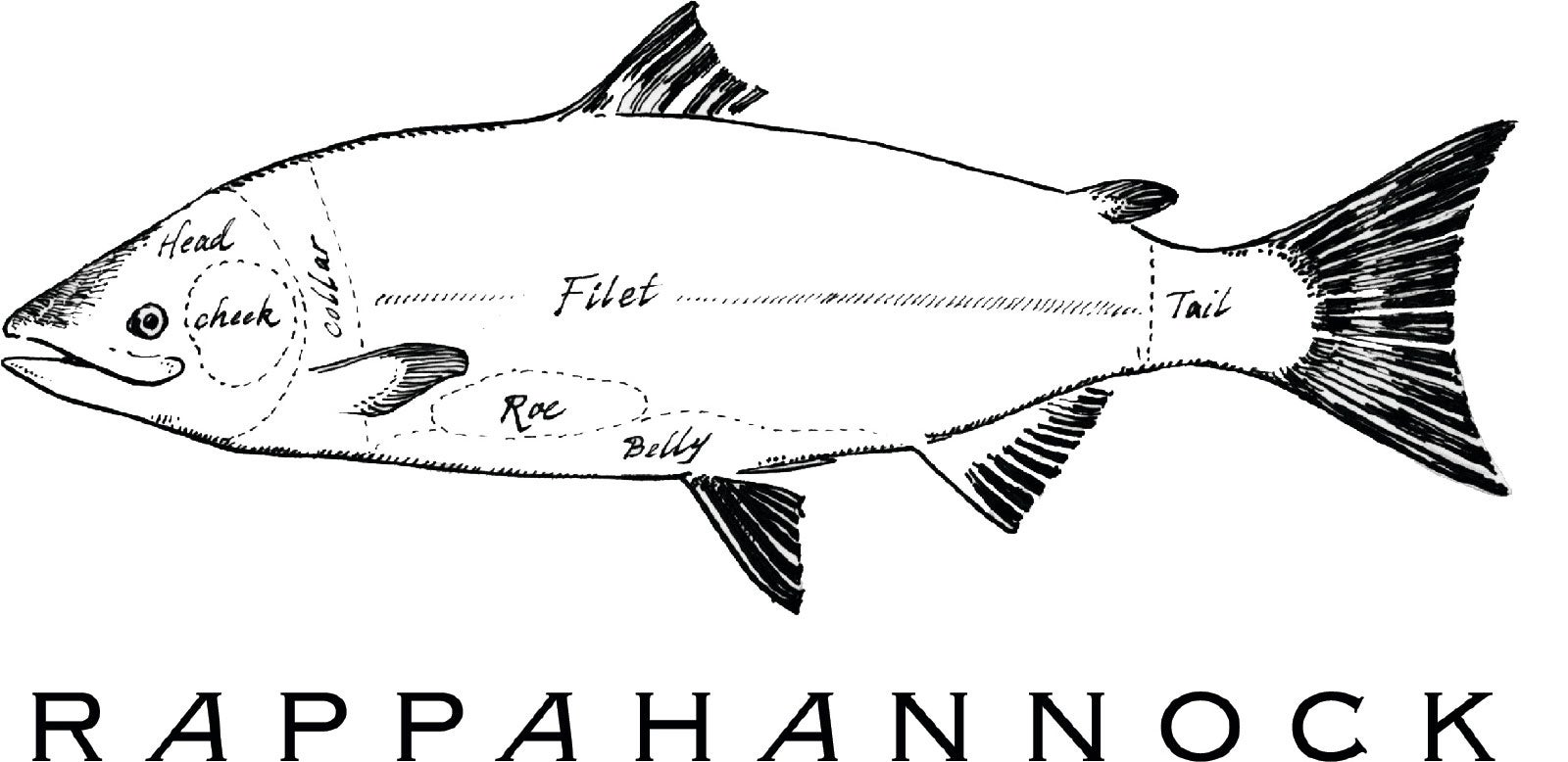 Rappahannock-black-back.jpg