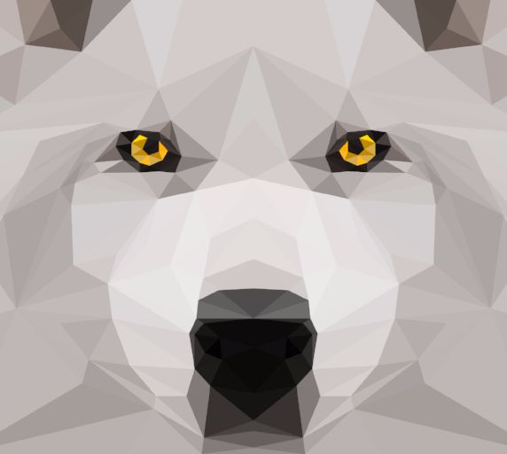 Wolf-Website-01.jpg